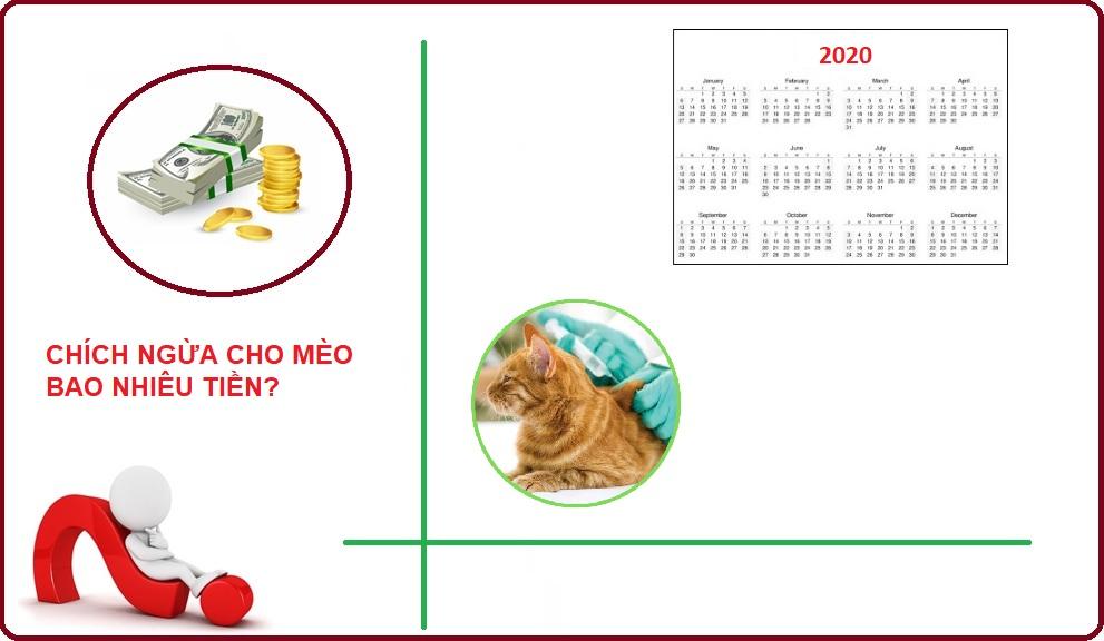 Chích ngừa cho mèo bao nhiêu tiền